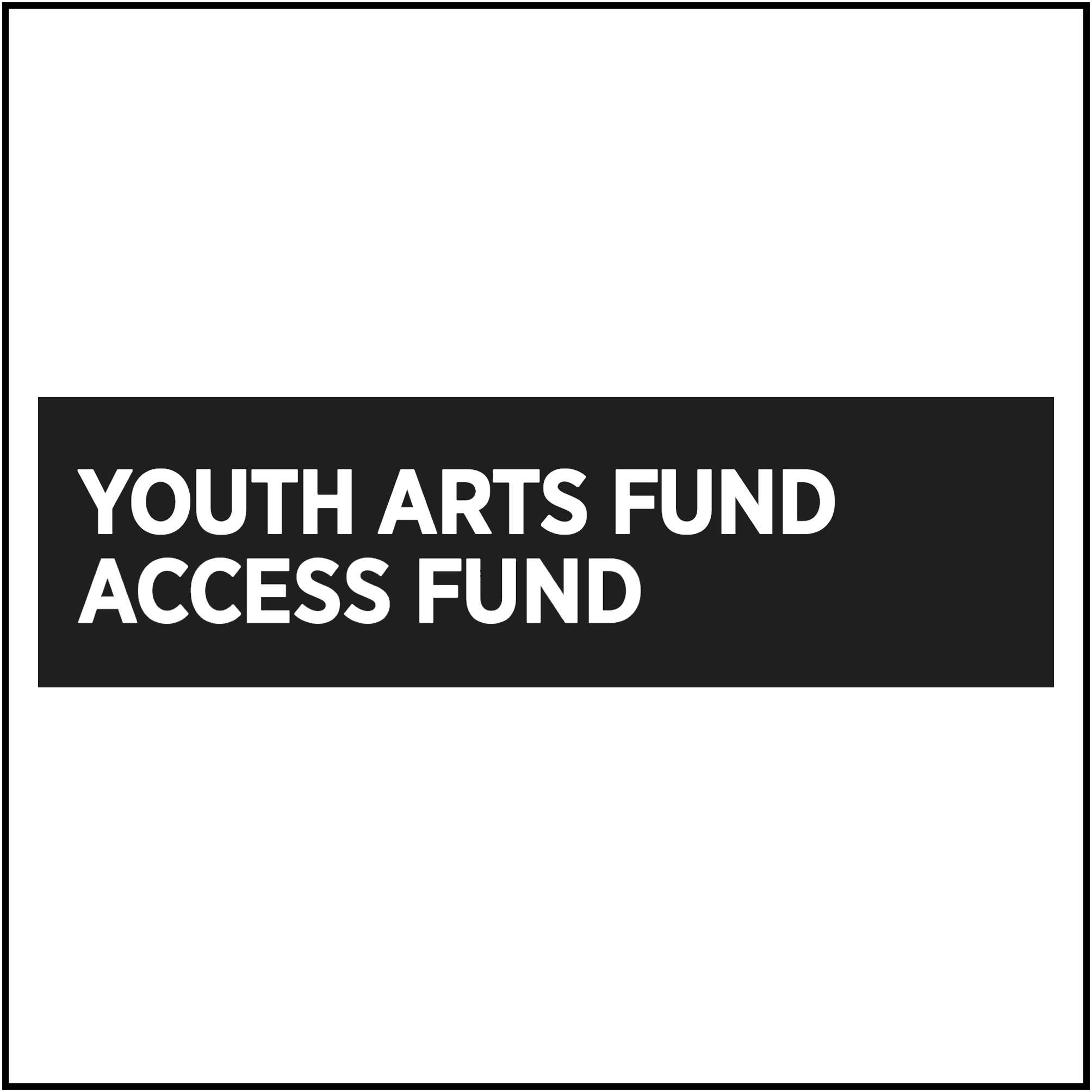 Youth Arts Fund Access Fund logo